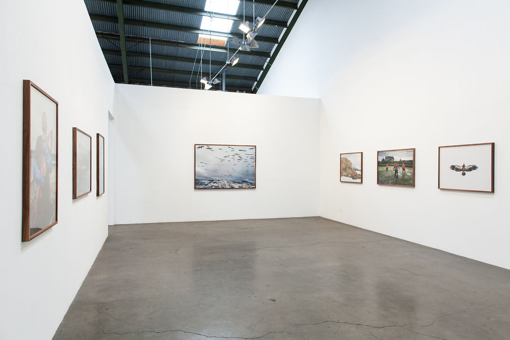Wolf Tide / Richard Heller Gallery / 2012